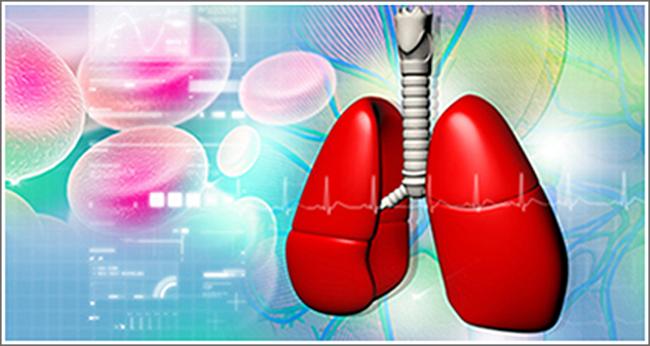 Воспаление дыхательных путей: симптомы, причины и особенности лечения