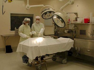 что делают патологоанатомы фото