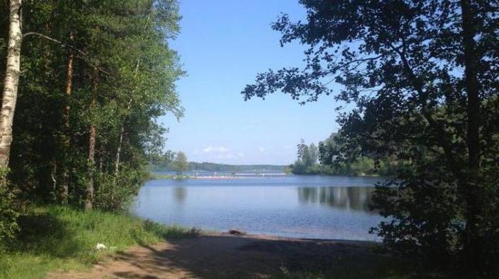 озеро большое симагинское рыбалка