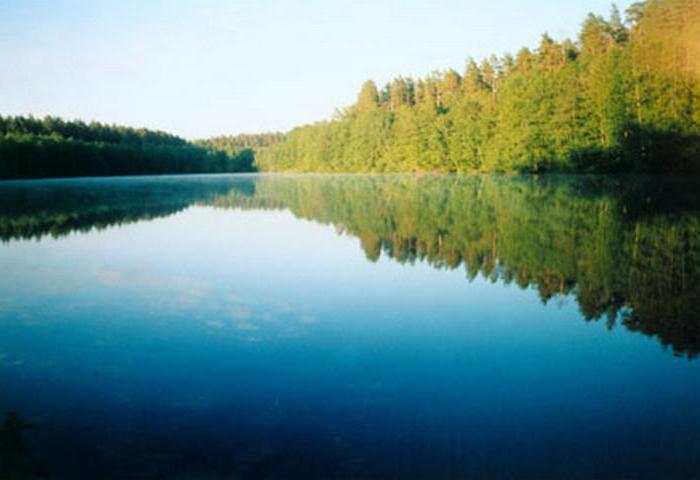 озера омской области название фото нашей студии