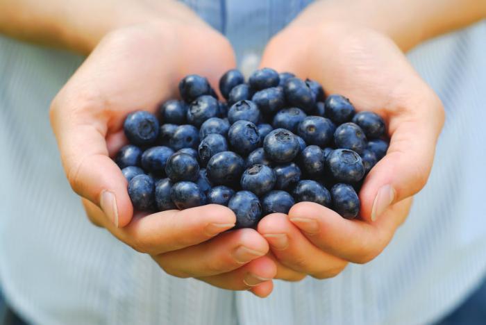 какие самые полезные ягоды для организма