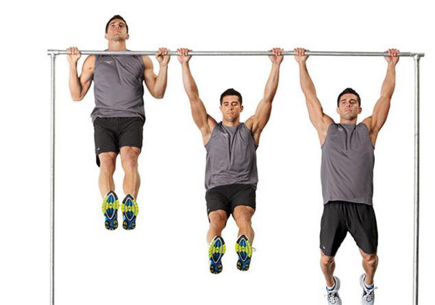 Упражнения на плечи в тренажерном зале в картинках 4