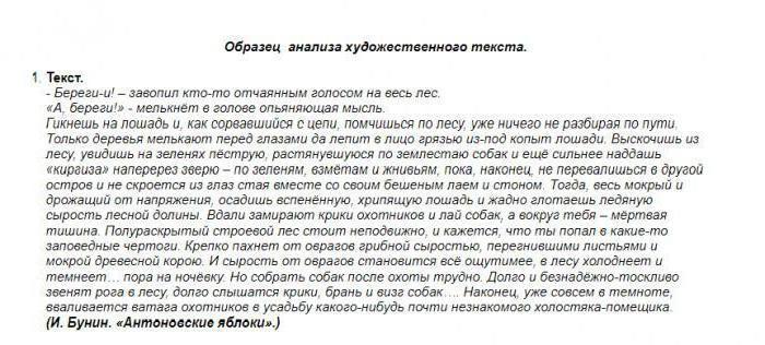 анализ текста по русскому языку
