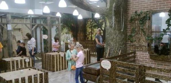 контактный зоопарк саратов