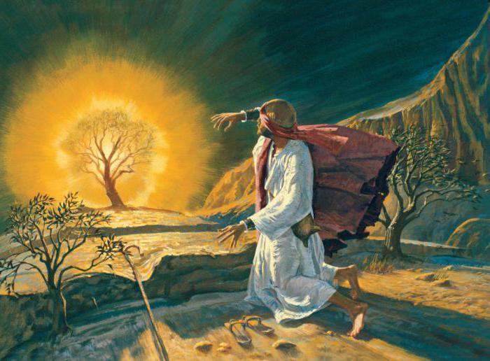 фразеологизмы библейского происхождения примеры и их значение