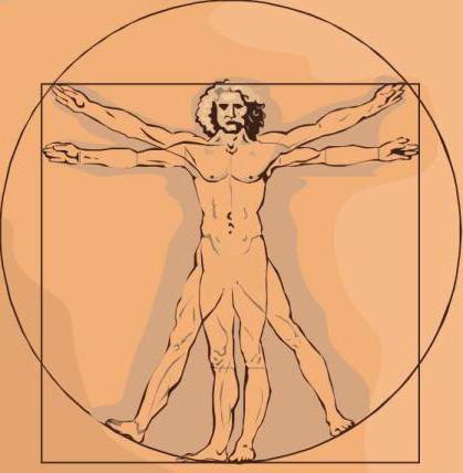 происхождение и сущность человека
