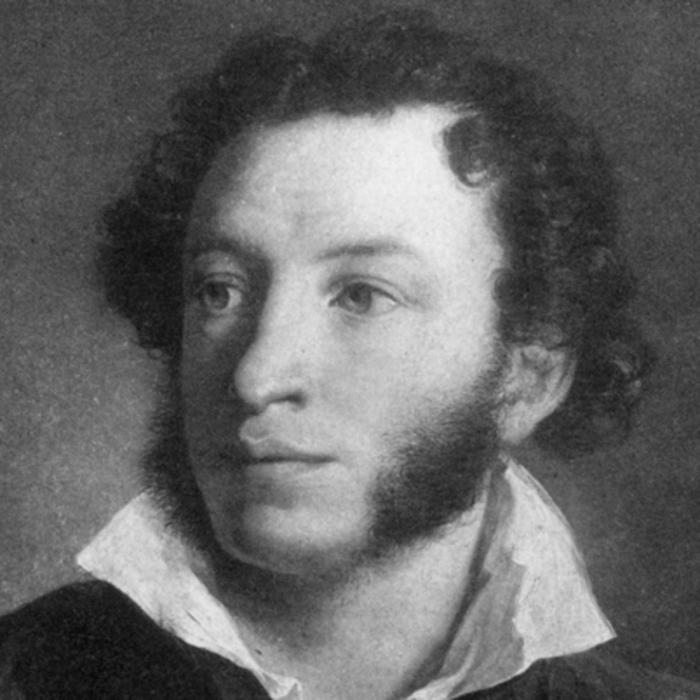 картинки пушкина и толстого пациента кладут