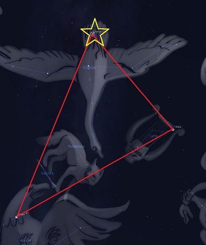 Созвездие Лебедь для детей и