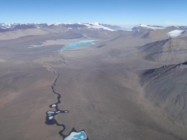 10 интересных фактов об антарктиде