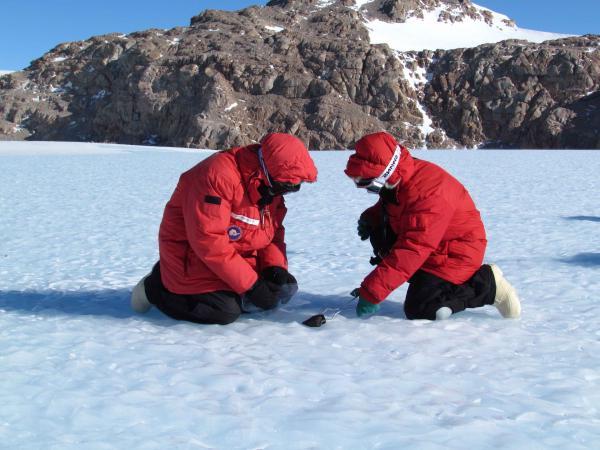метеорит, обнаруженный учеными в Антарктиде