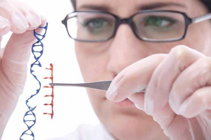 виды взаимодействия неаллельных генов
