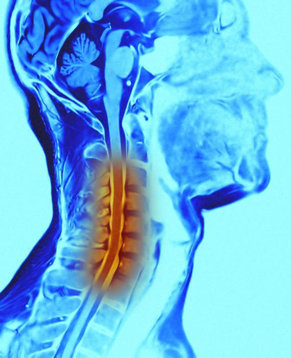 Лечение онкологических заболеваний народными
