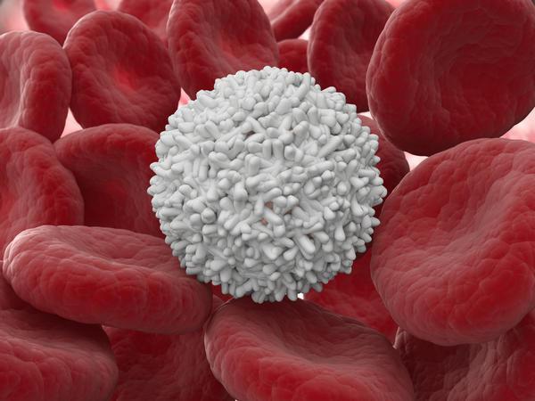 leykotsiti-v-sperme-povishennie