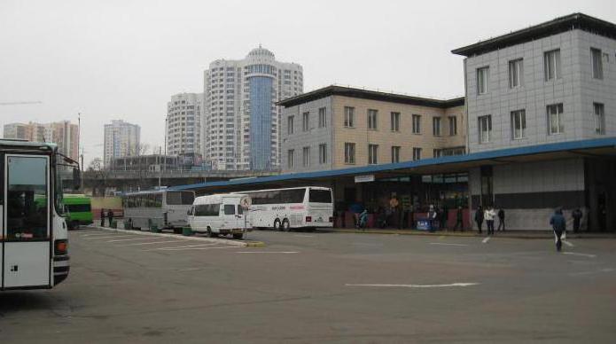 Центральный автовокзал киев фото