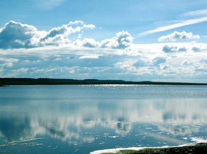 знакомства новосибирская область чаны