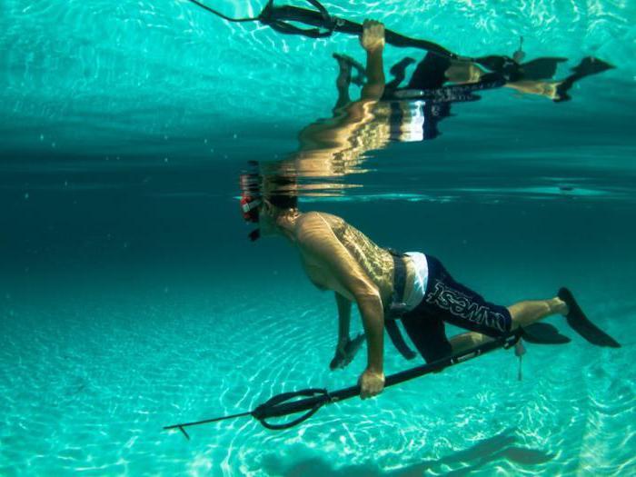 пневматическое подводное ружье своими руками для охоты