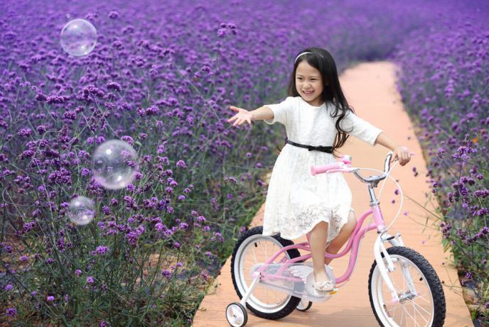 велосипеды коляски для детей от 1 года