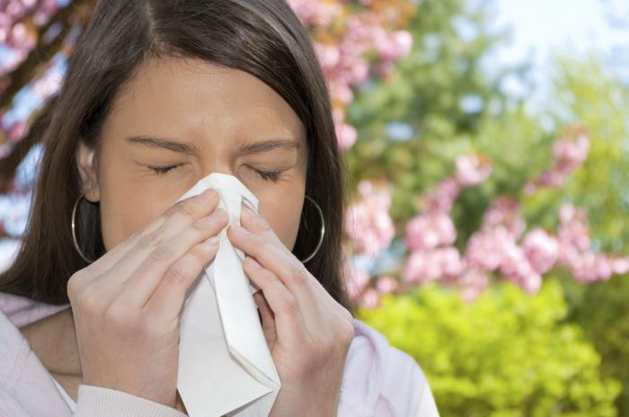 диета при аллергии на травы