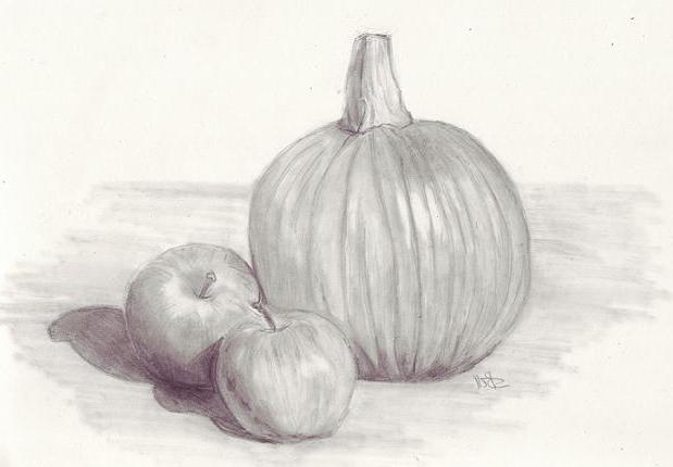 как научиться рисовать карандашом поэтапно
