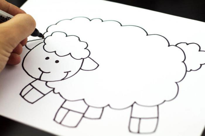 как нарисовать овечку карандашом поэтапно