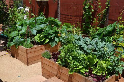 оформление огорода на даче своими руками