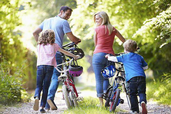 Проект на тему Здоровый образ жизни Условия здорового образа жизни  организация здорового образа жизни