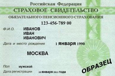 Данные паспорта инн и снилс