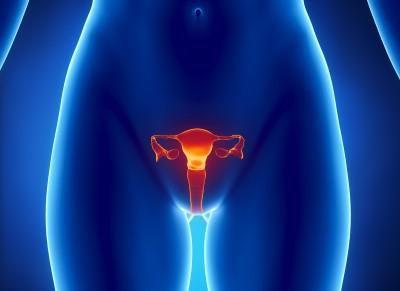 Как берут анализ на впч у женщин