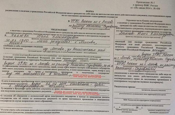 Двойное гражданство в России запрещено? Закон о двойном гражданстве в РФ