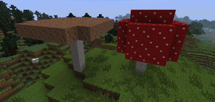 как вырастить грибы в майнкрафт 1 12