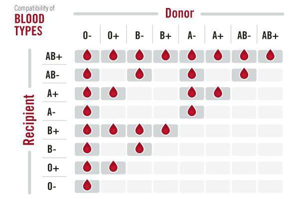 2 положительная группа крови совместимость