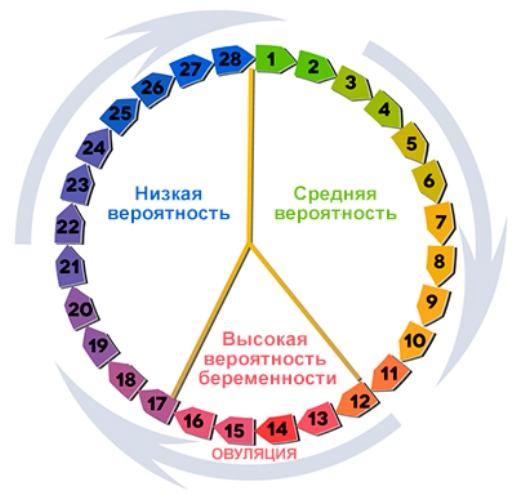 С какого дня считать цикл месячных? Начало цикла - это первый день месячных