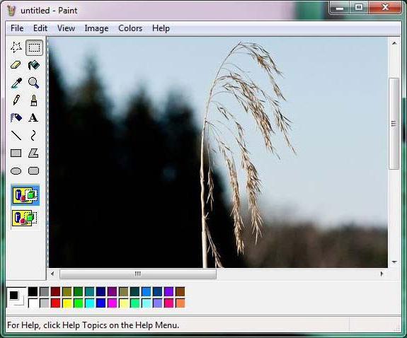 Paint program on computer Computer paint program