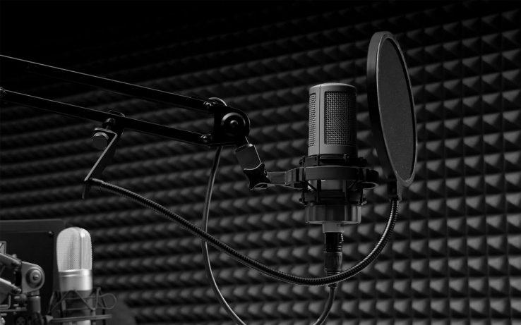 Студийный микрофон с ограничительной сеткой