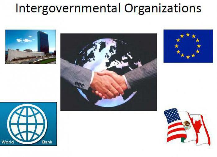 правосубъектность межправительственных организаций