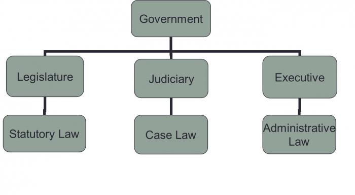 legislation administrative law and statutory instruments - the third of a series of short videos looking at delegated legislation this one looks at statutory instruments and explain whe.