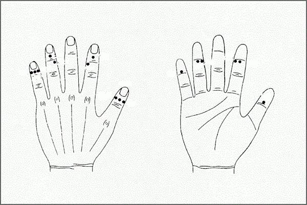 точки на руках отвечающие за органы