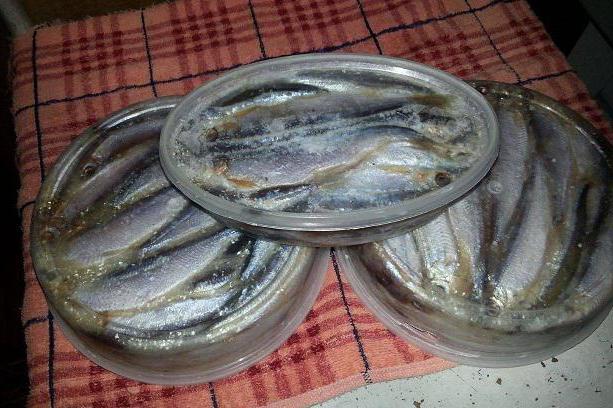 тугунок рыба фото