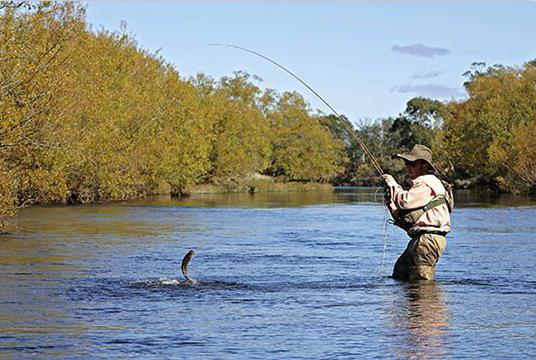 тугунок рыба как ловить