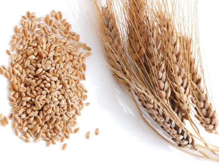 из пшеницы какая крупа