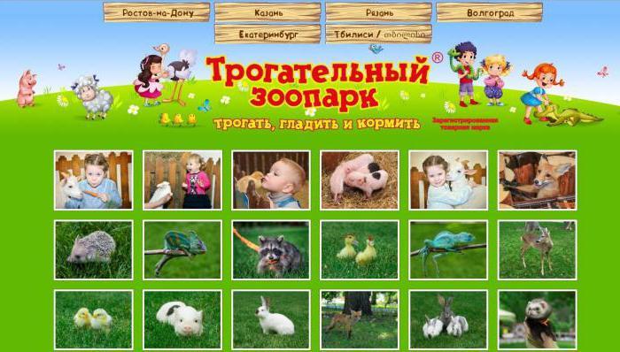 ростовский зоопарк ростов на дону