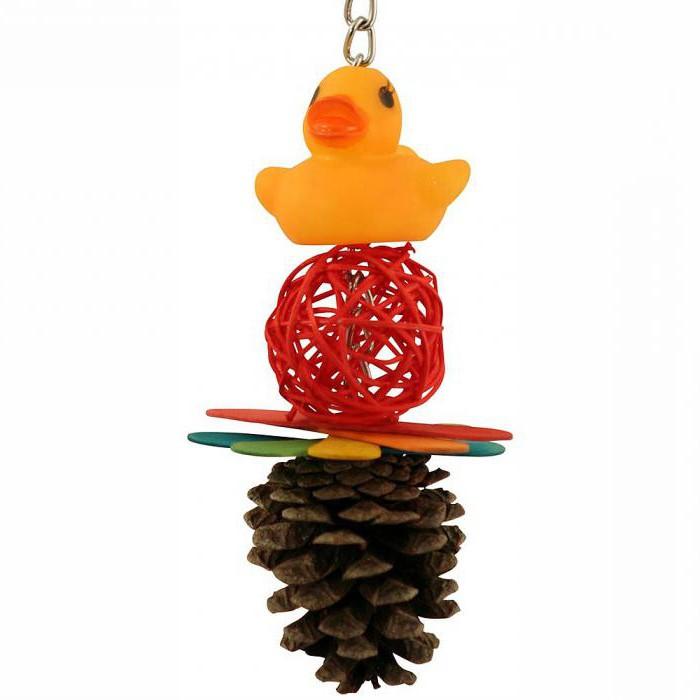 игрушки для волнистых попугаев своими руками