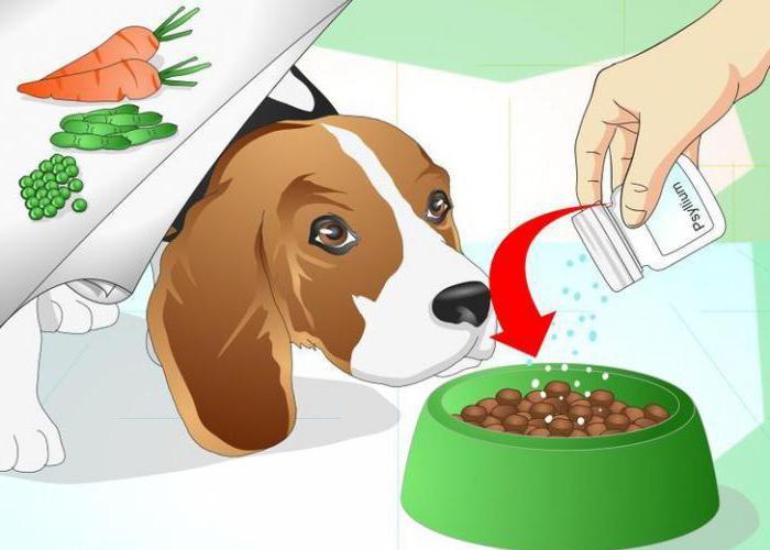 можно ли собаке супрастин от аллергии
