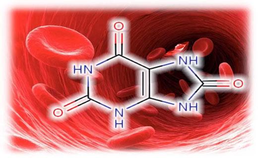 Как восстановить мочевую кислоту
