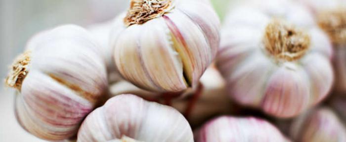 удобрения для чеснока осенью
