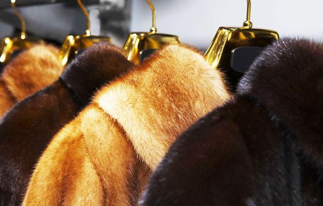 Как постирать натуральный мех кролика в домашних условиях