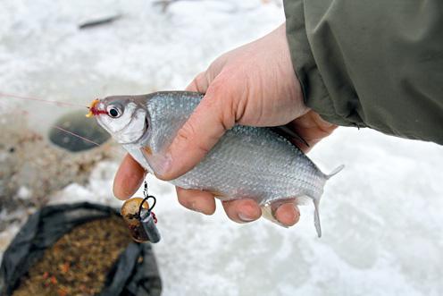 Блесна для зимней рыбалки