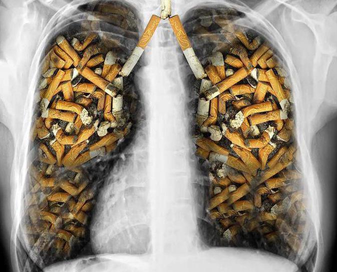 Курение отнимает десять лет жизни