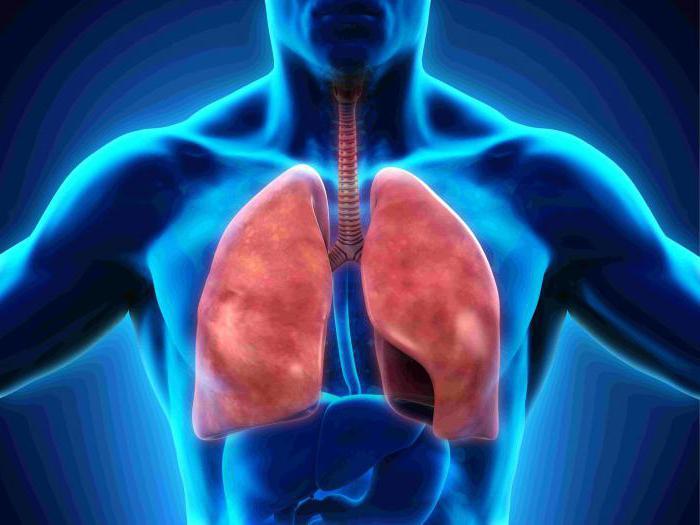 Как тренировать дыхалку в домашних условиях 80