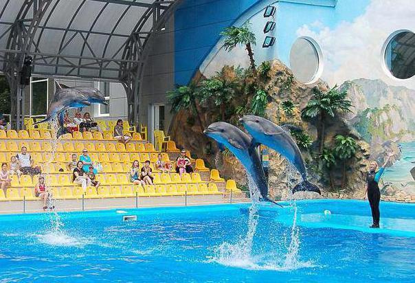 Парк Шевченка (Харьков): дельфинарий